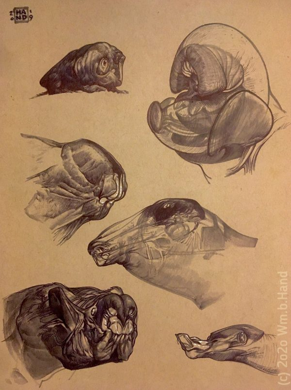 """William Hand's drawing """"Six Creature Heads in Ballpoint"""" in the Diner's Club exhibition"""