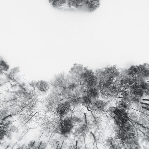 "Adam LaPorta's photograph ""Winter's Land"" in the Adrift exhibition"