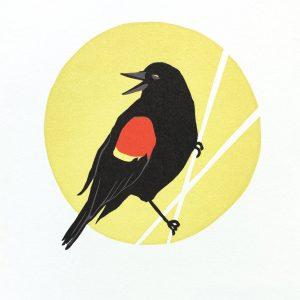 ChrisCharles' Red Winged Blackbird Print